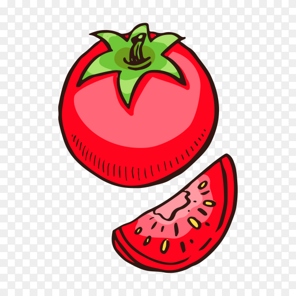 Red tomato on transparent background PNG