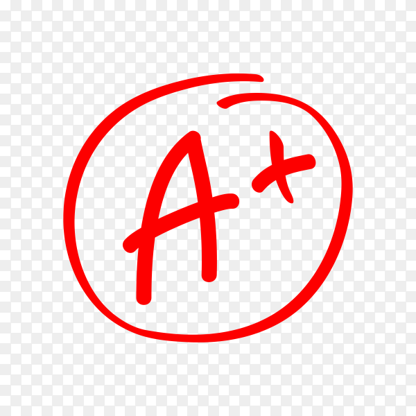 Test exam mark report on transparent background PNG